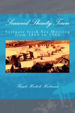 Book Cover Image for Shanty Town